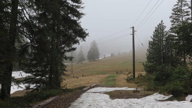 Eine Stromleitung über einen schneebedeckten Weg im Moorgebiet Ibergeregg.