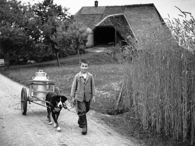 Ein ärmlich gekleidetes Kind, das mit einem Hund und Milchtanse auf einer Landstrasse geht, im Hintergrund ein Bauernhaus.
