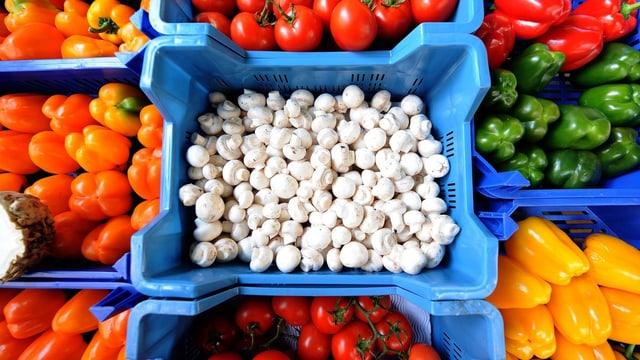 Gemüsestand mit mehreren verschiedenen Gemüsen.