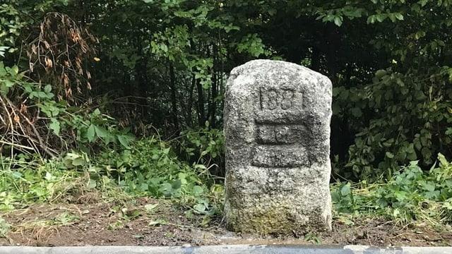 Der Grenzstein mit dem eingemeisselten Zuger Wappen.