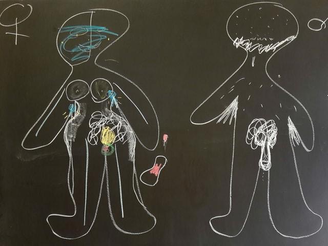 Zwei Kreidefiguren auf einer Wandttafel: Eine Frau mit Brüsten und Vulva, ein Mann mit Bart und Penis.