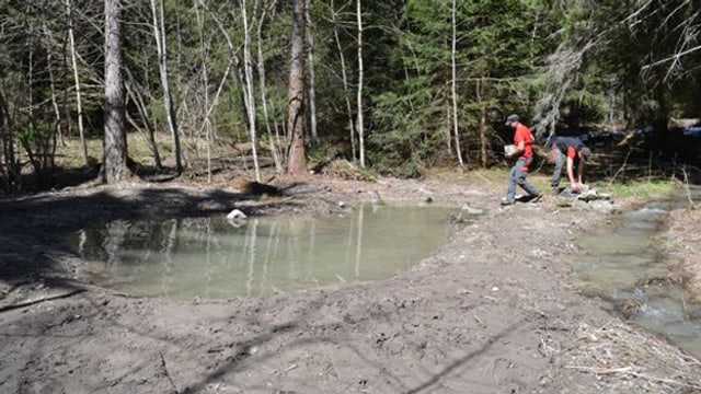 Zwei Forstwarte arbeiten an der Befestigung von Teichen.