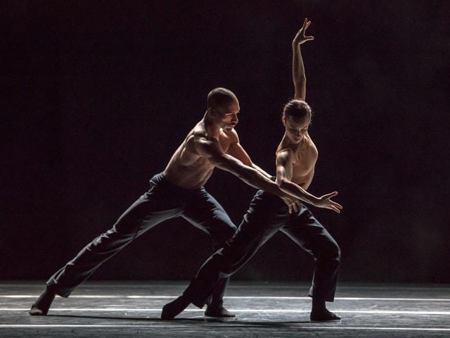 Eine Tänzerin und ein Tänzer im Gegenlicht.