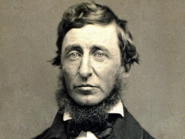 Daguerreotypie des amerikanischen Dichters Henry David Thoreau.