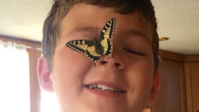Junge mit Schmetterling auf der Nase