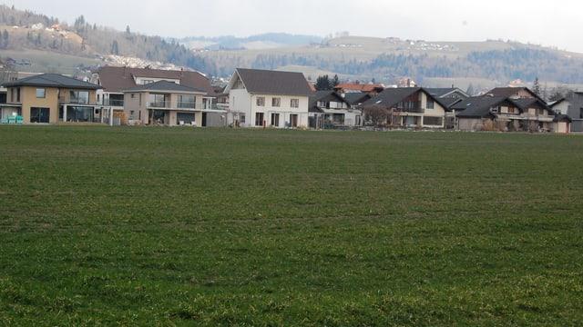 Grosse Wiese, begrenzt durch Einfamilienhäuser.