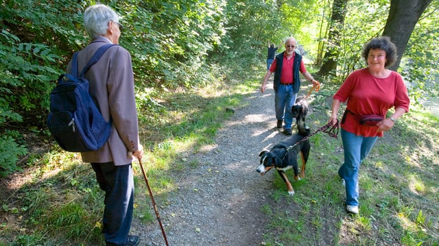Hundebesitzer auf dem Spaziergang im Wald.