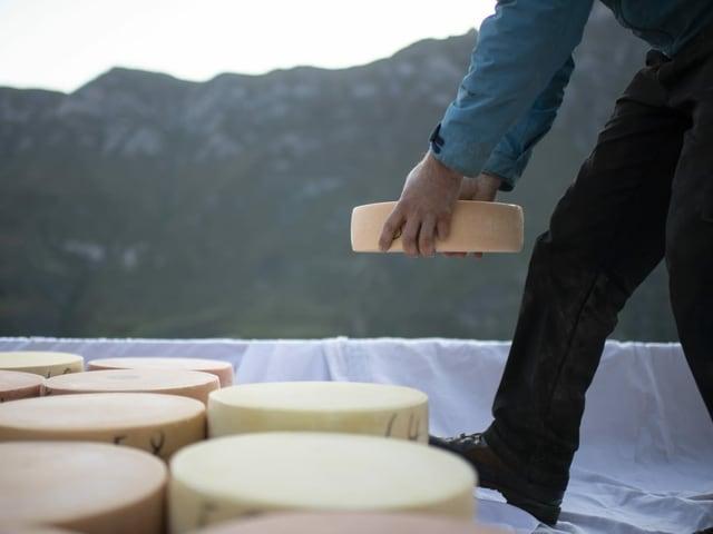 Ein Käser legt einen Laib Käse zu anderen, die bereits auf einem Tuch am Boden liegen.