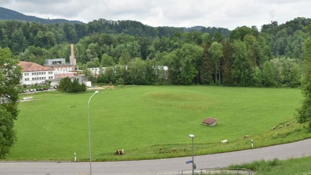 Blick auf die Landschaft südlich des Sittertal Areals, wo der geplante Ausgleichsweiher entstehen soll.