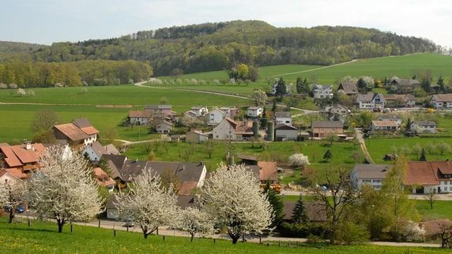 Blick auf Hersberg