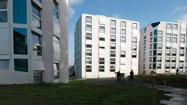 Drei weisse neu gebaute Häuserblocks mit gorssen Fenstern.