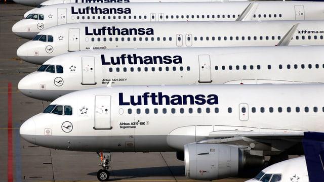 Meherere Lufthansa-Flugzeuge in einer Reihe.