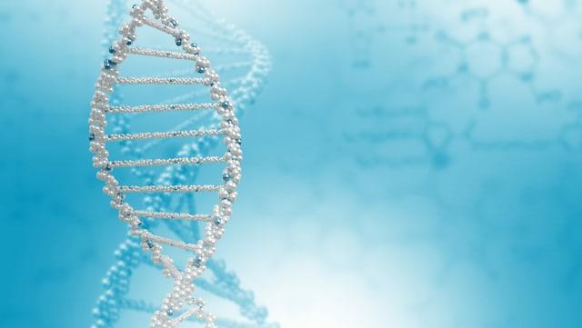 Ein DNA-Strang.