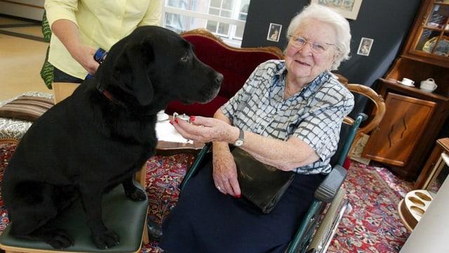 Hund auf Stuhl, daneben alte Frau im Rollstuhl