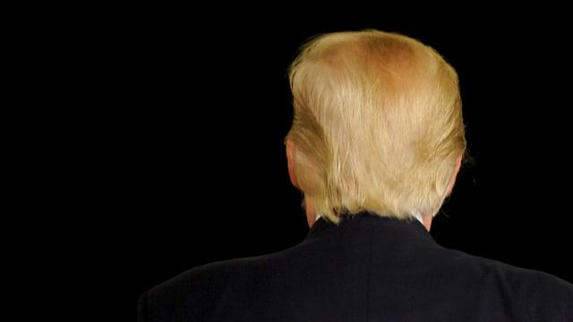 Aufnahme des Hinterkopfs von US-Präsidentschaftskandidat Donald Trump.
