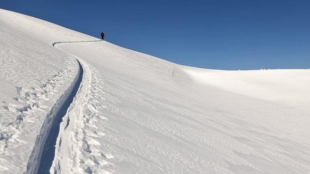 Fastizs d'in skiunz da turas.