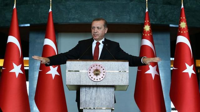 Präsident Erdogan am Rednerpult.