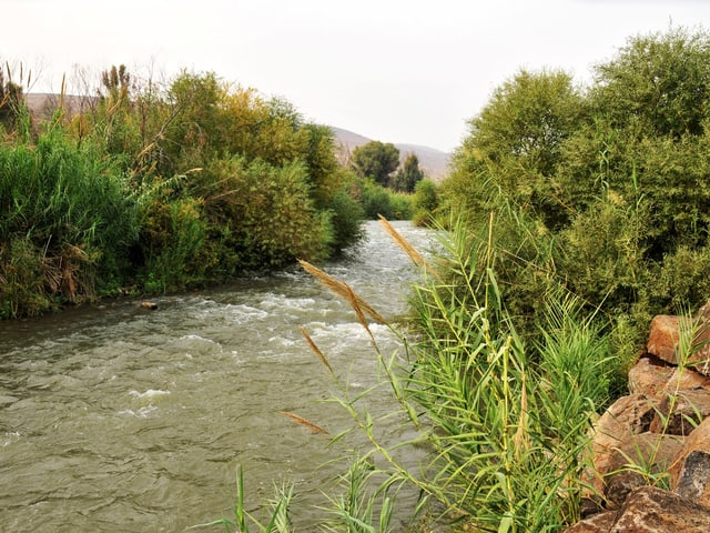 Fluss in grüner Landschaft