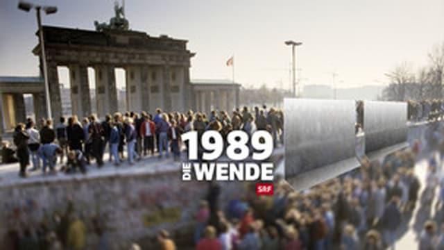 Vor 25 Jahren: Die Mauer fällt