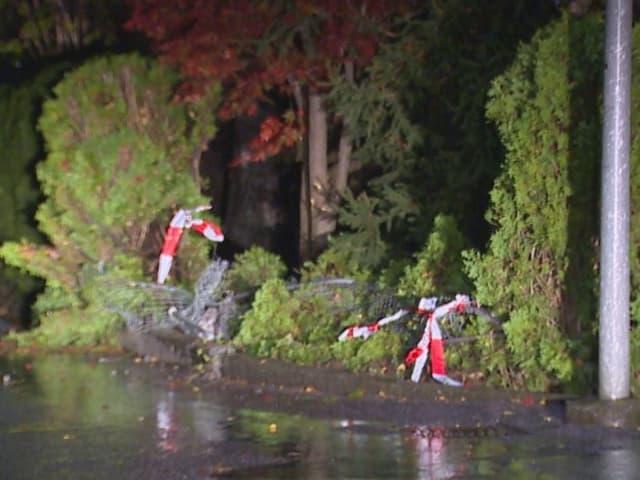 Umgeknickte Bäume und ein zerrissenes Flatterband an der Unfallstelle.