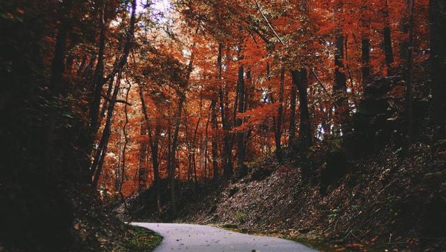Schöne Herbstlandschaft