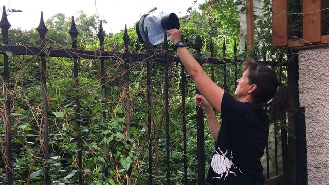 Gabi Müller nimmt einen Behälter aus dem Gebüsch