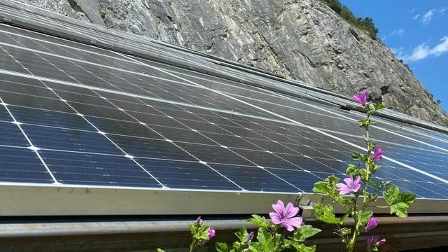 purtret da cellas solaras.