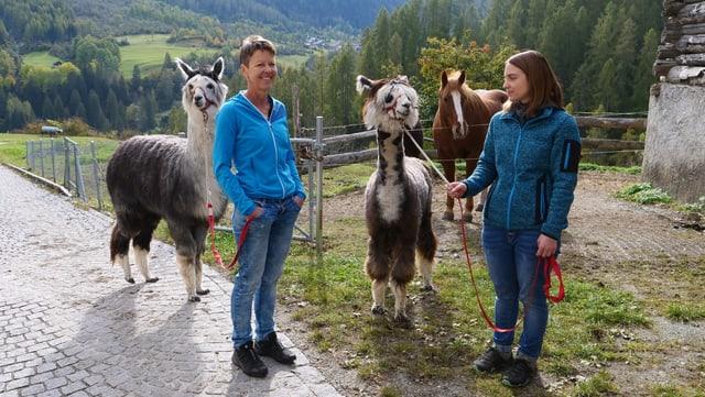 Christine e Brida Cantineni cun lur alpacas.
