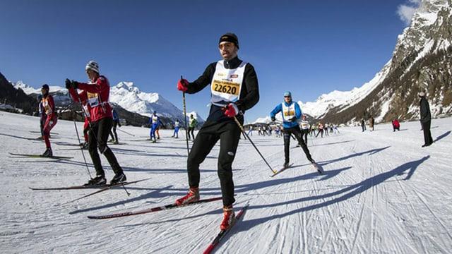 Langläufer am Engadiner Ski-Marathon