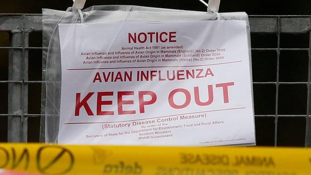 Ein Plakat mit Warnungen vor Vogelgrippe auf einer Entenfarm in Grossbritannien