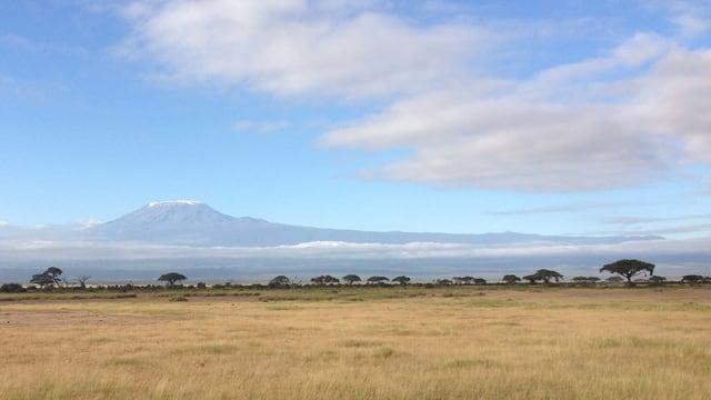Der Kilimandscharo in der Ferne.