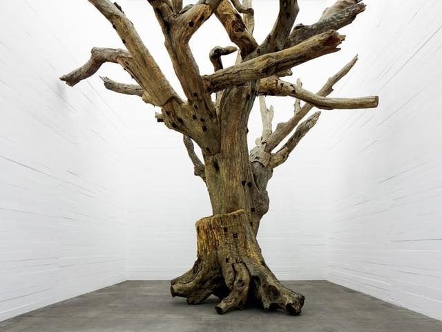 Weisser Raum mit Baum, der aus einzelnen Baumteilen zusammengesetzt ist