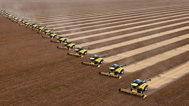Dutzende Traktore auf einem Feld mit Soja