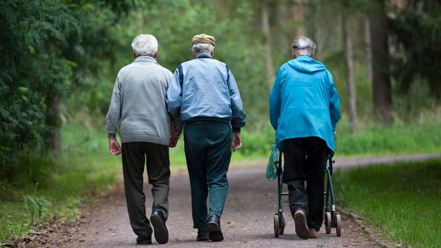 Ältere Menschen beim spazieren im Park.