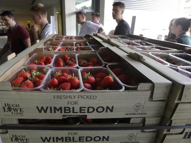 Farbuns da Wimbledon