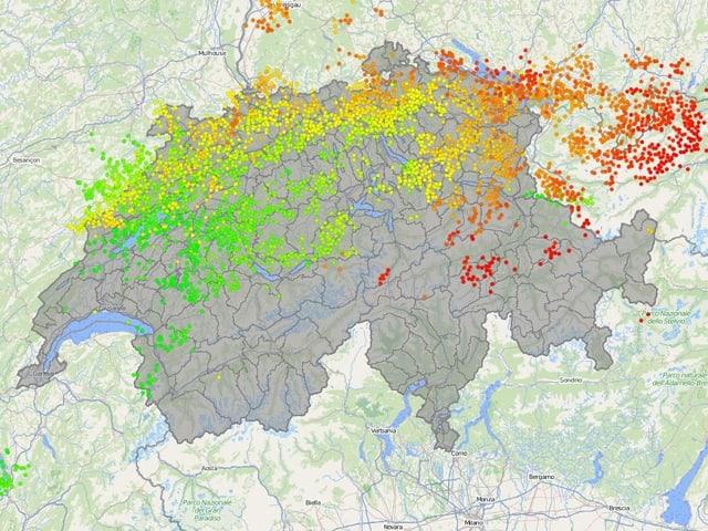 Auf der Schweizkarte sind  tausende Blitztreffer als farbige Punkte dargestellt