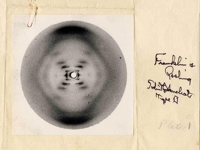 Aufnahme der DNA-Struktur mithilfe der Röntgenbeugung