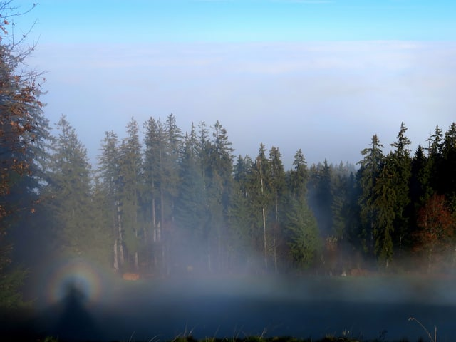 Nebelschwaden oberhalb von Guggsiberg mit einem Brockengespenst.