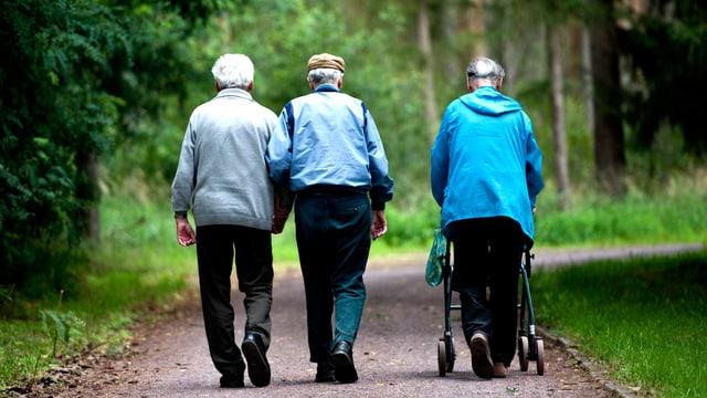 Rentner spazieren im Wald.