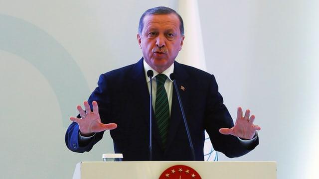 Der türkische Präsident Erdogan bei einer Konferenz in Istanbul