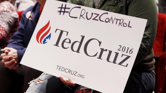 Republikaner für Cruz