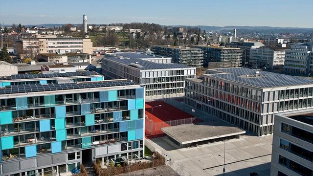 Blick auf eine Siedlung in Zürich Oerlikon mit Häusern voller Solarpanels auf den Dächern.