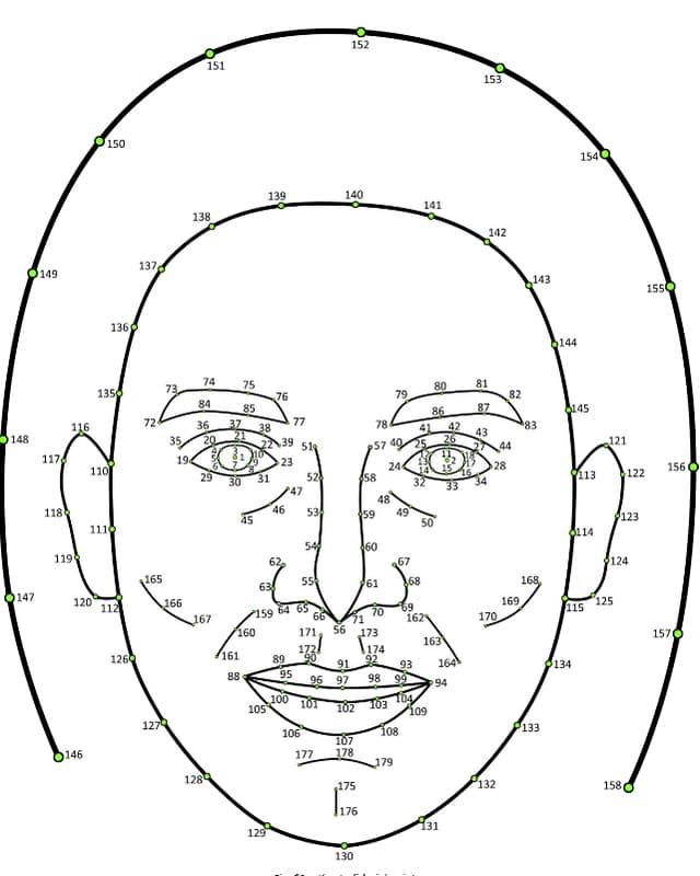 """Eine Skizze eines Gesichtes, in dem mit Nummern die """"Messpunkte"""" verzeichnet sind, die britische Psychologen für ihre Analysen verwendeten."""