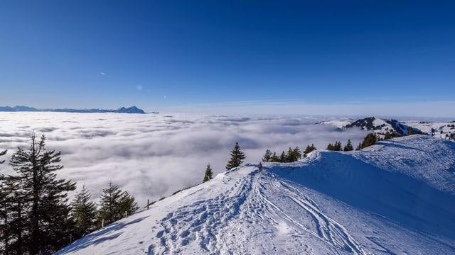 Von der Rigi sah man am Samstag auf ein Nebelmeer mit Obergrenze bei 1500 Metern in der Zentralschweiz.
