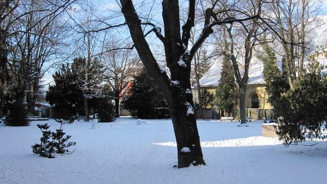 Stadtgarten im Winter