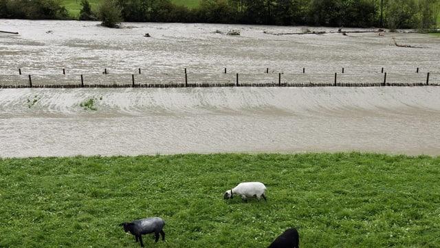 Hochwasser in Wolfenschiessen im Jahr 2011