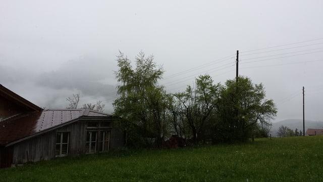 Einzelne Flocken fallen auf eine Wiese hinter einem Bauernhof.
