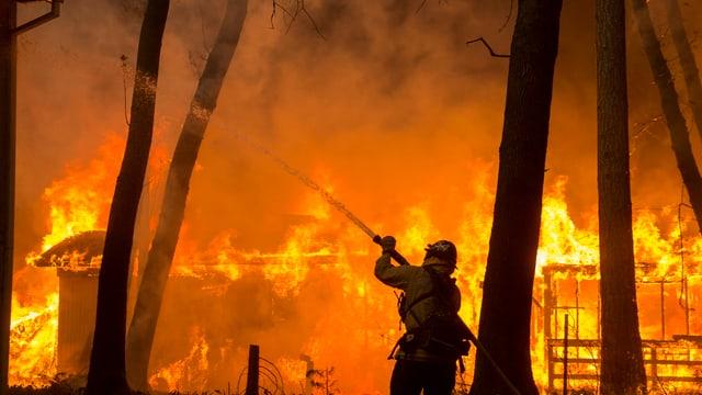 Purtret da l'incendi a Paradise, en California.