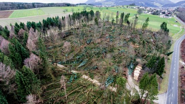 So sah es in Kestenholz SO im Januar aus.