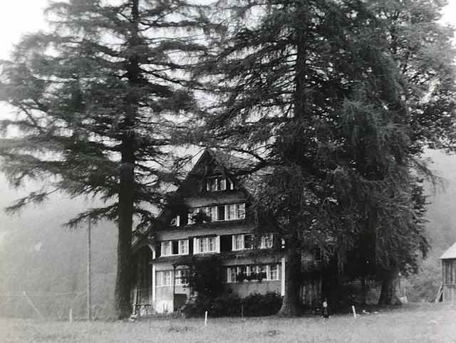 Ein altes Haus zwischen zwei Bäumen.